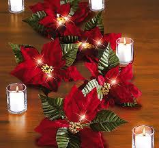 χριστουγεννιατικα φυτα