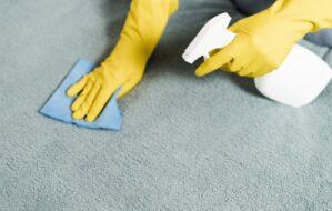 Χέρια με γάντια καθαρίζουν χαλί